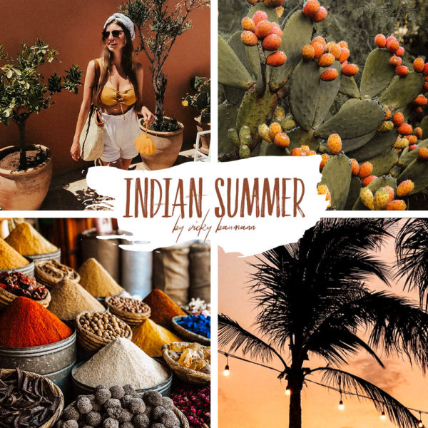 Indian Summer Influencer Presets